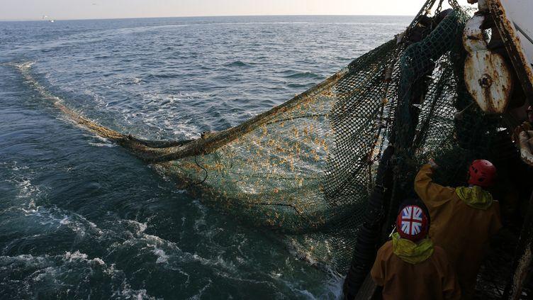 Des pêcheurs remontent leur filet, le 23 septembre 2013, à bord d'un chalutier au large de Boulogne-sur-Mer (Pas-de-Calais). (PASCAL ROSSIGNOL / REUTERS)