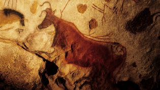 """La """"vache rouge"""" de la grotte de Lascaux. (DOZIER MARC / AFP)"""