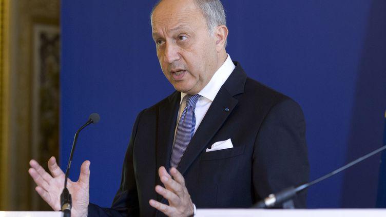 Le ministre des Affaires étrangères, Laurent Fabius, le 28 juillet 2014, à Paris. (KENZO TRIBOUILLARD / AFP)