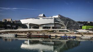 L'architecture futuriste du Musée des Confluences de Lyon  (Jeff Pachoud / AFP)