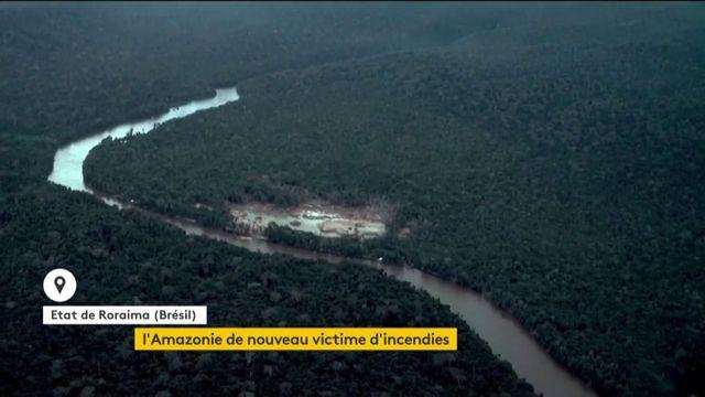 De nouveaux incendies ravagent l'Amazonie