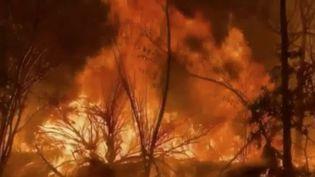 Aux États-Unis, les pompiers de Californie doivent faire face à un incendie de très grande ampleur.Le feu qui sévit au nord de Los Angeles a déjà ravagé plus de 4000 hectares de brousse. Des centaines d'habitations ont dû être évacuées. (FRANCE 2)