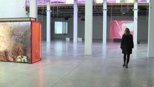 Culture : à quand la réouverture des musées ? (FRANCE 3)