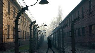 Un homme se promène dans les vestiges du camp de concentration d'Auschwitz, en Pologne, le 5 décembre 2019. (JANEK SKARZYNSKI / AFP)