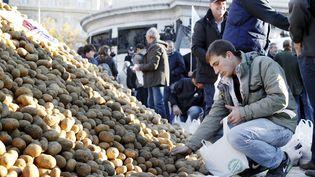 Un homme ramasse des pommes de terre déversées par des agriculteurs en colère, place de la République à Paris, le 5 novembre. (THOMAS SAMSON / AFP)