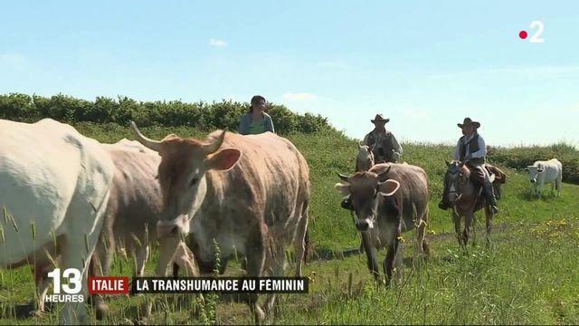 Italie : des femmes en selle pour la transhumance