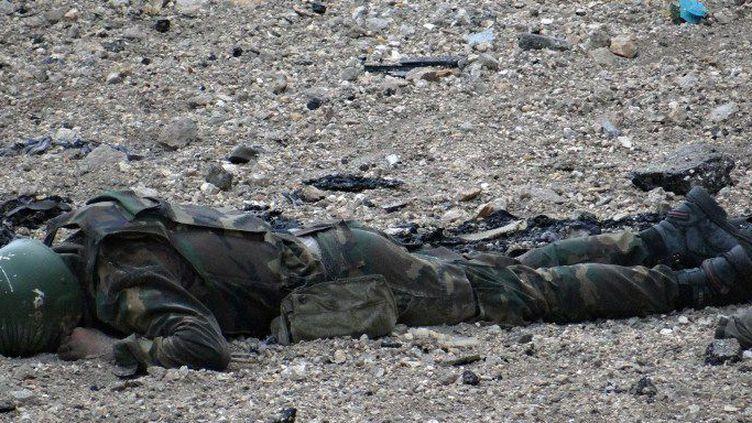 Le corps d'un milicien pro-gouvernemental, tué dans la ville d'Alep, dans le nord de la Syrie, le 27 février 2014. (AFP PHOTO / ALEP MEDIA CENTRE / TAMER AL-HALABI)