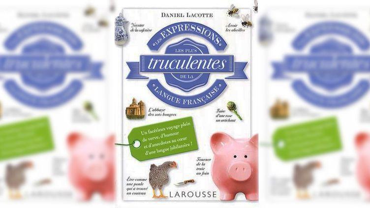 La couverture du livre de Daniel Lacotte chez Larousse  (Larousse)