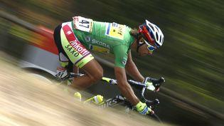 Le coureur Peter Sagan lors de la 14e étape du Tour de France 2015 entre Rodez et Mende, le 18 juillet. (STEFANO RELLANDINI / REUTERS)