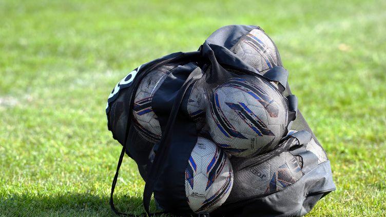 Des ballons dans un sac sur une pelouse dans les Pyrénées-Orientales, en février 2020. (MICHEL CLEMENTZ / MAXPPP)