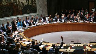 Le Conseil de sécurité des Nations unies, à New York, le 29 juillet 2015. (KENA BETANCUR / AFP)