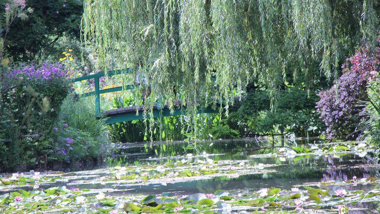Nénuphars, Giverny, Claude Monet, Jardin Claude Monet. France (Fondation Claude Monet)