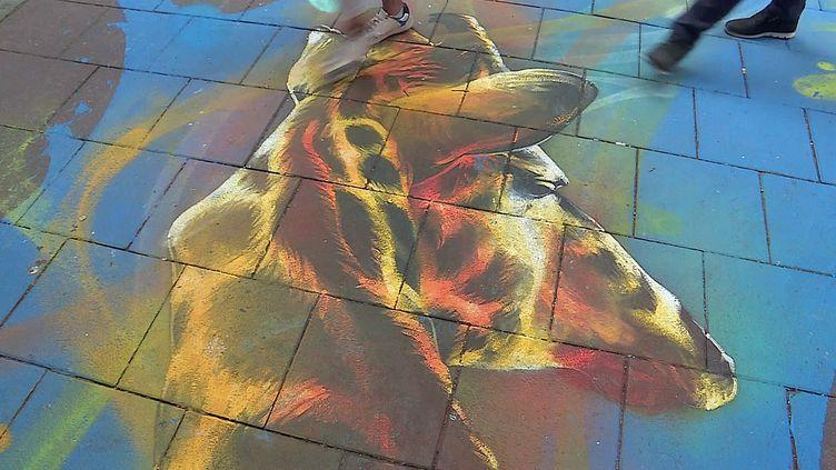 Le graffeur Dan 23 crée une fresque horizontale dans le quartier de la Vignette à Strasbourg (France 3 Grand Est)