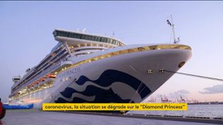 "Le ""Diamond Princess"" (FRANCEINFO)"