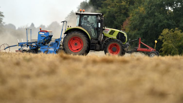 Un agriculteur dans un champ de blé, le 21 août 2018, à Bouloire (Sarthe). (JEAN-FRANCOIS MONIER / AFP)