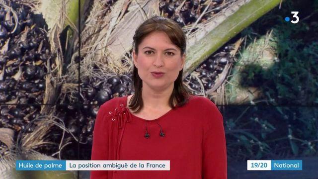 Huile de palme : la position ambiguë de la France