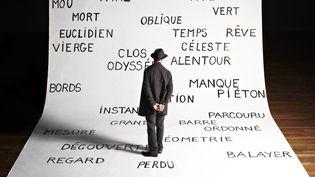 """Espæce"", Aurélien Bory, Avignon 2016  (Aglé Bory)"