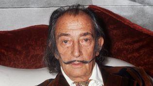Salvador Dali, le 13 décembre 1972 à Paris. (STF / AFP)