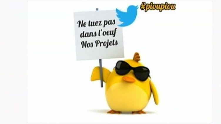 """Capture d'écran du site des """"Poussins"""", les auto-entrepreneurs frondeurs - mai 2013 ( FRANCE 2 / FRANCETV INFO)"""