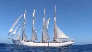 """L'armada de Rouen (Seine-Maritime) rassemble chaque année les plus beaux bateaux du monde. Le 6e édition prévue à partir du 6 juin accueillera le joyau de la """"Santa Maria Manuela"""", un voilier portugais voué à la destruction et qui propose aujourd'hui des croisières touristiques. (FRANCE 3)"""