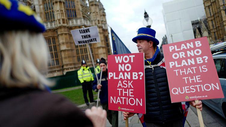 Un manifestant anti-Brexit devant le Parlement britannique, le 21 janvier 2019 à Londres (Royaume-Uni). (TOLGA AKMEN / AFP)