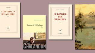 Les livres sélectionnés pour le Goncourt  (DR)