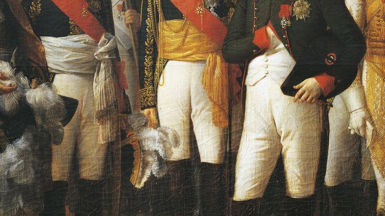 Napoléon recevant les députés. Tableau de Theodore Berthon (1776-1859). (DEA / G. DAGLI ORTI / DE AGOSTINI EDITORIAL / GETTYIMAGES)