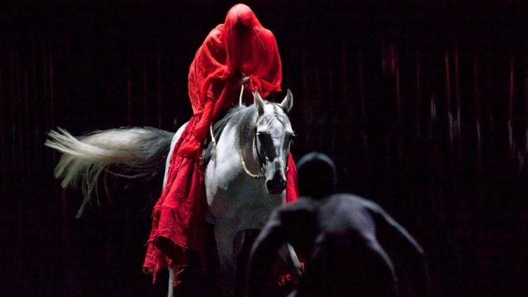 """""""Le Centaure et l'animal"""" de Bartabas et Ko Murobushi  (Nabil Boutros)"""