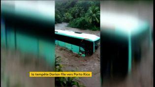 Un bus sur une route inondée par la tempête Dorian en Martinique (FRANCEINFO)
