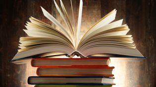 A Livre ouvert (Monticellllo - Fotolia)