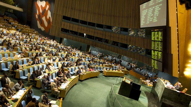 L'Assemblée générale de l'ONU, le 3 août 2012. (DON EMMERT / AFP)