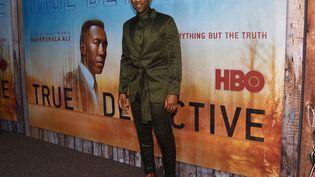 """L'acteur Mahershala Ali, interprèteWayne David Hays dans la série """"True Detective"""". (CHRIS DELMAS / AFP)"""