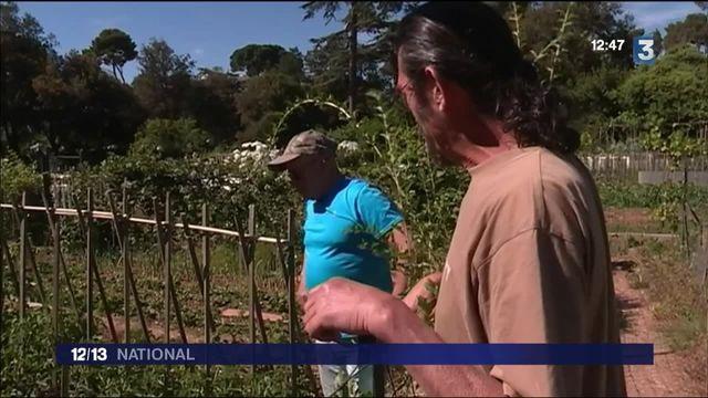 Marseille : des jardiniers se mobilisent contre un projet de rocade
