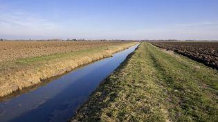 Bande enherbée entre un cours d'eau et un champ (photo d'illustration) (MAXPPP)