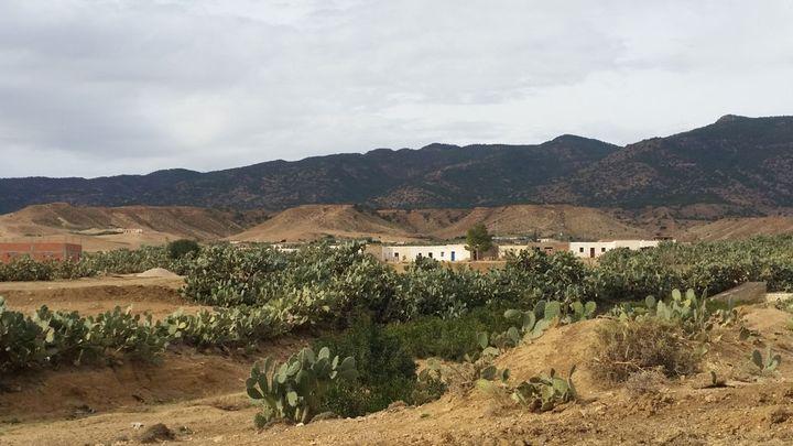 (Au pied du mont Mghilla, entre Sidi Bouzid et Kasserine, les groupuscules djihadistes s'implantent. ©Mathilde Lemaire/Radio France)