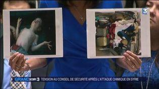 L'ambassadrice américaine à l'ONU montre des photos d'enfants victimes de l'attaque chimique. (FRANCE 3)