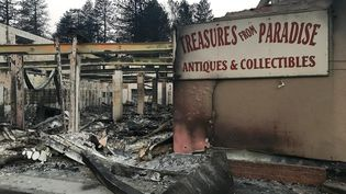 """Paradise, petite ville de 26 000 habitants au nord de Sacramento,a été quasiment entièrement détruite par l'incendie """"Camp Fire"""". (GREGORY PHILIPPS / RADIO FRANCE)"""