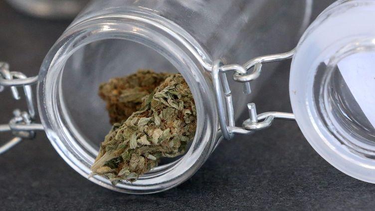 Une expérimentation du cannabis thérapeutique va être menée en France (Photo d'illustration). (LIONEL VADAM / MAXPPP)