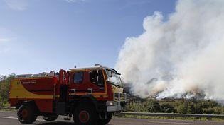 Des pompiers luttent contre un incendie près du village de Rodès (Pyrénées-Orientales), jeudi 11 août 2016. (RAYMOND ROIG / AFP)