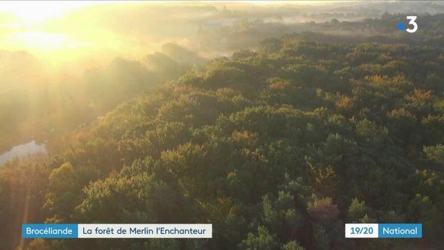 Bretagne : à la découverte de la forêt de Brocéliande