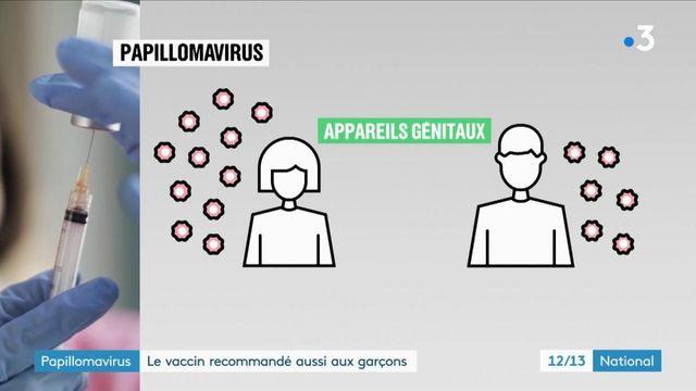 Papillomavirus : le vaccin aussi recommandé pour les garçons