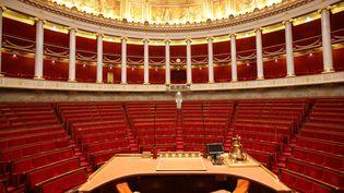 L'hémicycle de l'Assemblée nationale. (PHOTO12 / GILLES TARGAT / AFP)