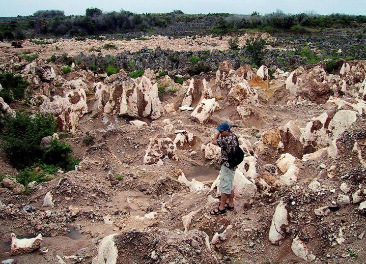 Un paysage lunaire : c'est ce à quoi ressemble l'île de Nauru depuis la fin de l'extraction du phosphate (REUTERS PHOTO)