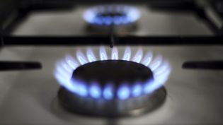 Le tarif réglementé du gaz augmente de 1,6% ce 1er novembre 2020. (JOHANNA LEGUERRE / AFP)