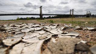 La sécheresse touche la Loire, le 7 septembre 2017, à Montjean-sur-Loire (Maine-et-Loire). (LOIC VENANCE / AFP)