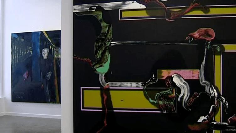 Une quarantaine d'oeuvres de la collection du Frac Auvergne sont exposées.  (capture d'écran France 3 / Culturebox)