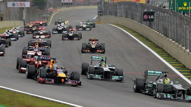 Le peloton de la F1 au Grand Prix du Brésil 2014