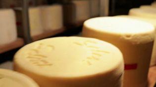 Le salers est un des fromages d'Auvergne les plus connus, anciens et réputés. Aujourd'hui, ils ne sont plus qu'une petite poignée de producteurs cantalous passionnés à perpétuer la tradition. (France 2)