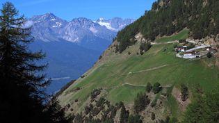 Les Alpes autrichiennes, dans la région du Tyrol. (Photo d'illustration) (REINHARD KAUFHOLD / DPA-ZENTRALBILD)