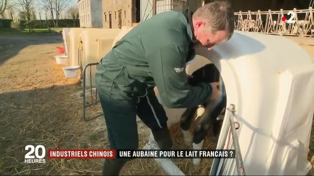Industriels chinois : une aubaine pour le lait français ?